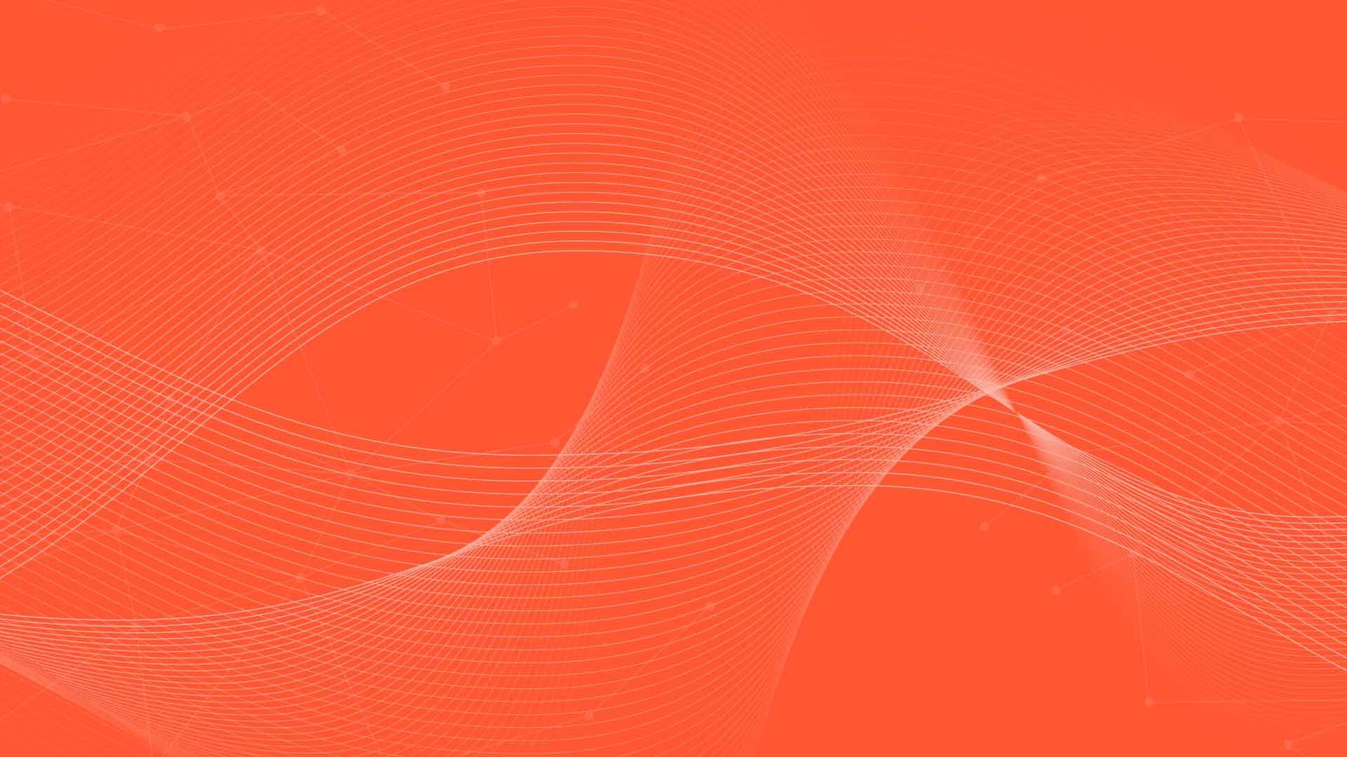 wsdip orange banner